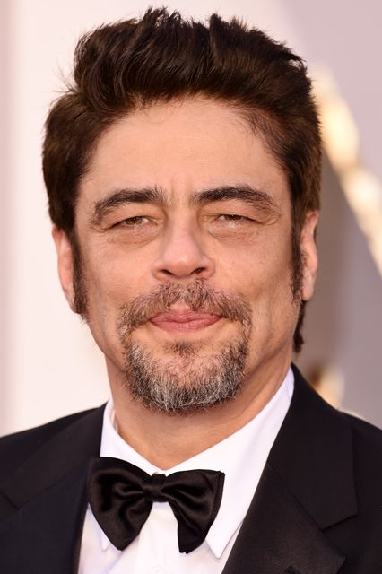 Benicio Del Toro Height and Weight