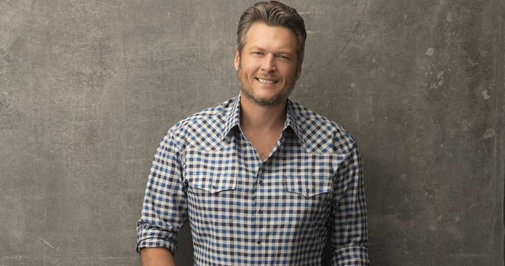 Blake Shelton's hair color is light brown